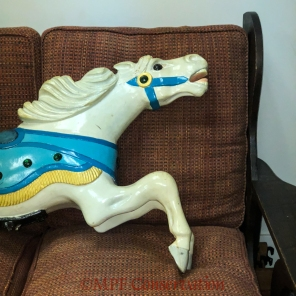w18 11 27 5 pony white small-5798